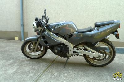Suzuki GSX 250 Cobra naked bike 1
